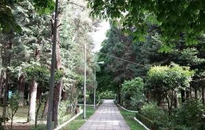 Άνδρας βρέθηκε απαγχονισμένος στο Πάρκο Φιλοδένδρων στην Τρίπολη