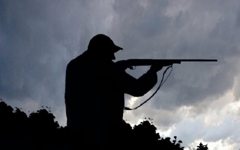 Παράνομο κυνήγι αγριογούρουνου στη Γορτυνία
