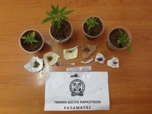 Ευρείες αστυνομικές επιχειρήσεις για την αντιμετώπιση της εγκληματικότητας στην Περιφέρεια Πελοποννήσου
