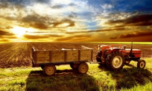 Διαδικτυακό εργαλείο για την προσαρμογή της κλιματικής αλλαγής στη γεωργία παρουσιάζεται στην ΠΔΕ