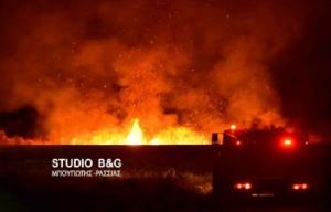 Αργολίδα: Πυρκαγιά τη νύχτα στη Νέα Κίο